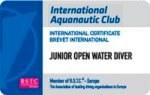 junior open diver.jpg